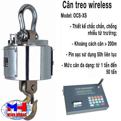 Cân treo điện tử wireless Mettler Toledo